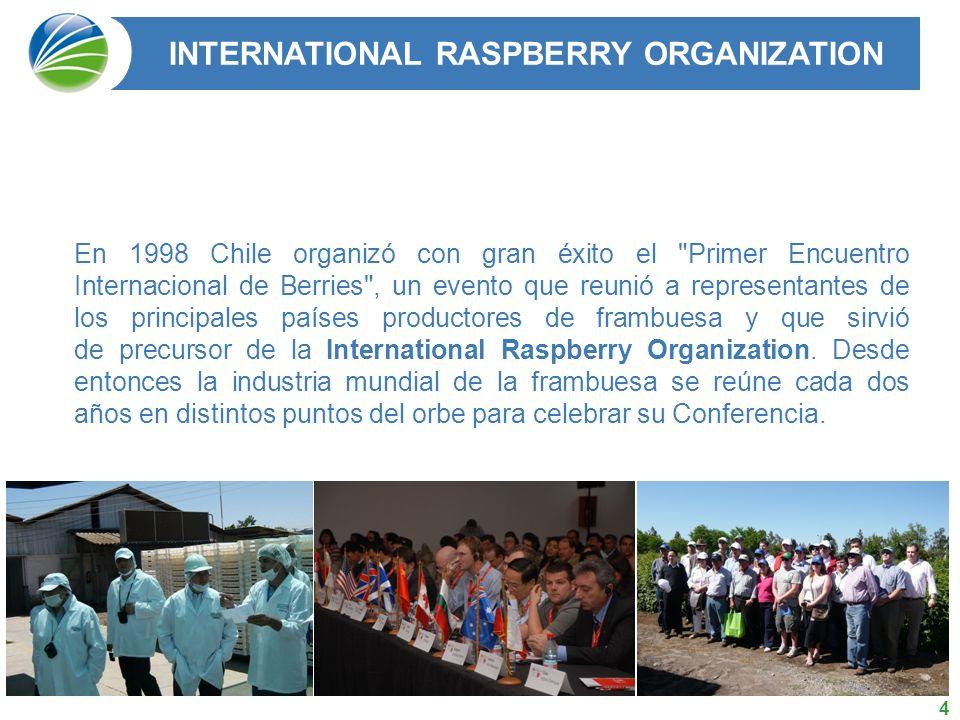 4 En 1998 Chile organizó con gran éxito el Primer Encuentro Internacional de Berries , un evento que reunió a representantes de los principales países productores de frambuesa y que sirvió de precursor de la International Raspberry Organization.