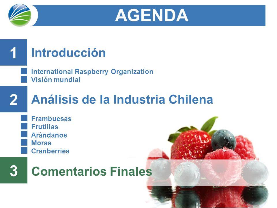 42 Análisis de la Industria Chilena Frambuesas Frutillas Arándanos Moras Cranberries AGENDA 2 Comentarios Finales 3 Introducción International Raspberry Organization Visión mundial 1