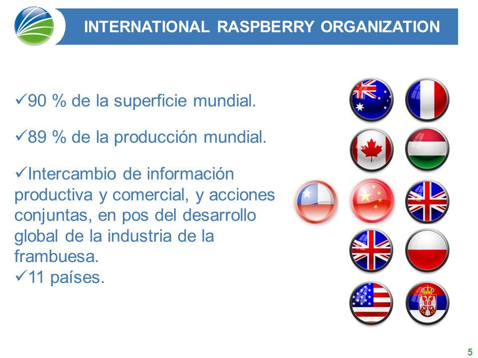 5 90 % de la superficie mundial.89 % de la producción mundial.