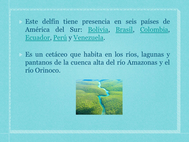 Este delfín tiene presencia en seis países de América del Sur: Bolivia, Brasil, Colombia, Ecuador, Perú y Venezuela.BoliviaBrasilColombia EcuadorPerúVenezuela Es un cetáceo que habita en los ríos, lagunas y pantanos de la cuenca alta del río Amazonas y el río Orinoco.