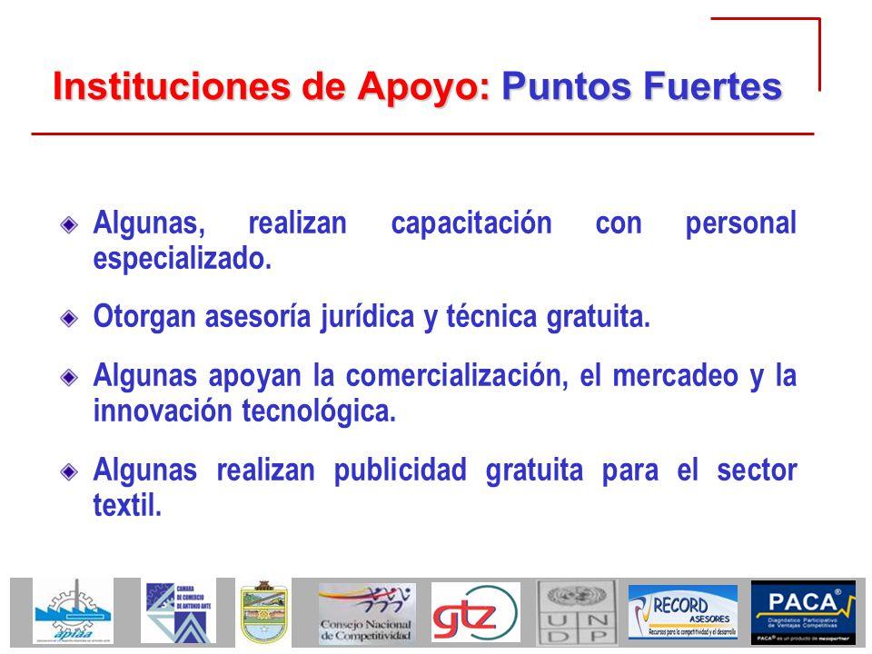 Instituciones de Apoyo: Puntos Fuertes Algunas, realizan capacitación con personal especializado. Otorgan asesoría jurídica y técnica gratuita. Alguna
