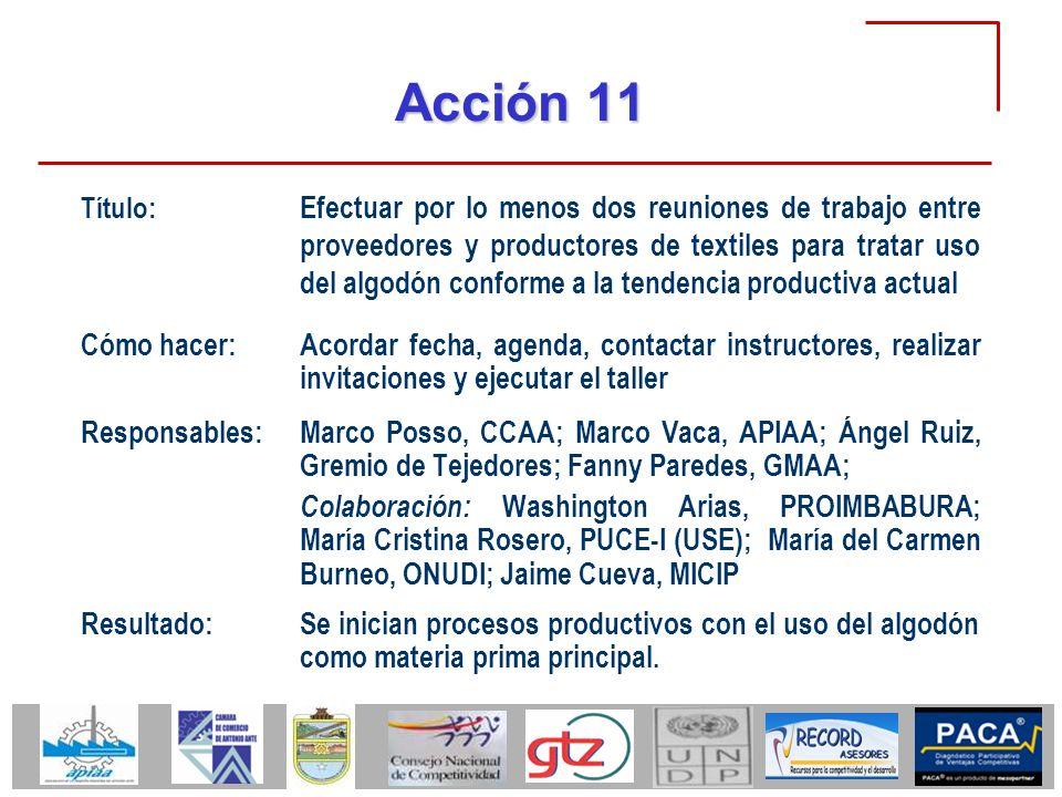 Acción 11 Cómo hacer:Acordar fecha, agenda, contactar instructores, realizar invitaciones y ejecutar el taller Responsables:Marco Posso, CCAA; Marco V