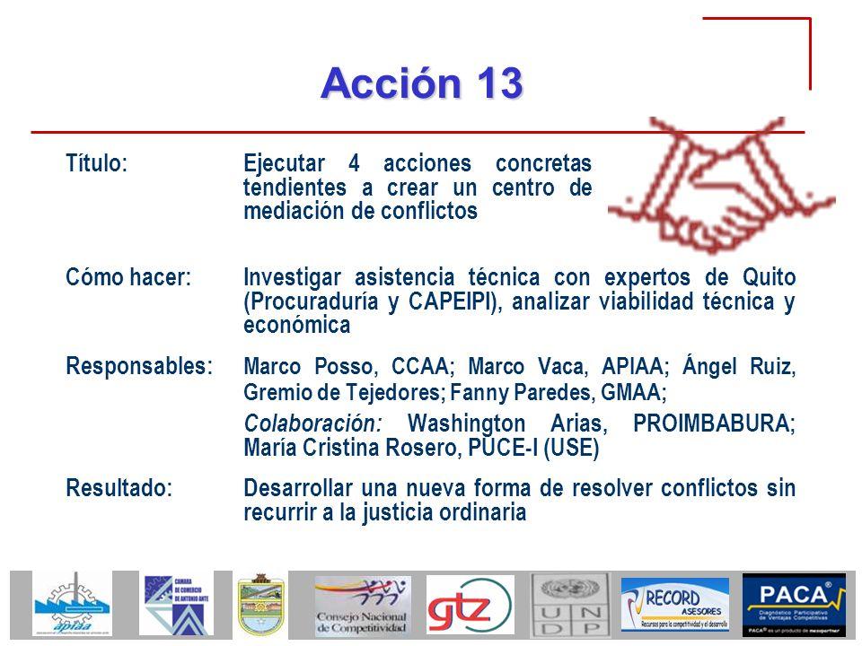 Acción 13 Cómo hacer:Investigar asistencia técnica con expertos de Quito (Procuraduría y CAPEIPI), analizar viabilidad técnica y económica Responsable