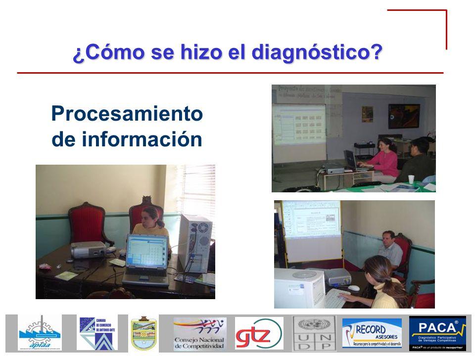 ¿Cómo se hizo el diagnóstico? Procesamiento de información