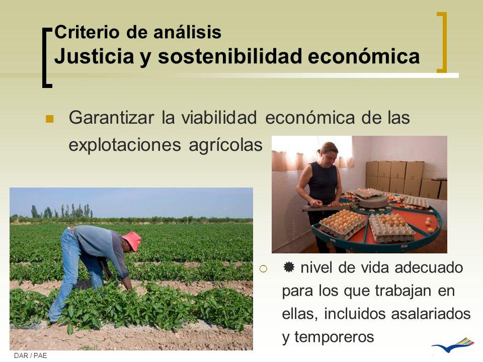 Criterio de análisis Justicia y sostenibilidad económica Garantizar la viabilidad económica de las explotaciones agrícolas nivel de vida adecuado para
