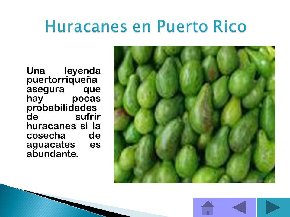 La palabra huracán es de origen indígena. (Juracán, el