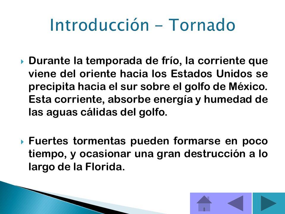 En la Florida se presentan más tornados durante los meses de junio, julio y agosto que en otros meses del año. En el verano, las tormentas se moviliza
