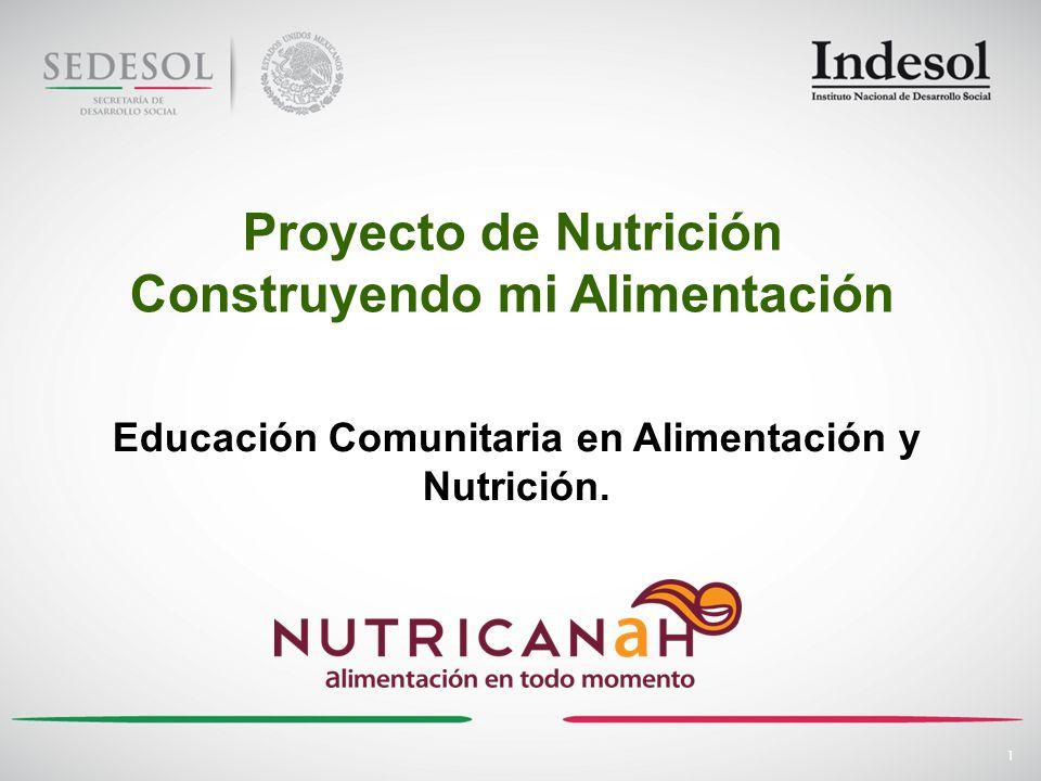 1 Proyecto de Nutrición Construyendo mi Alimentación Educación Comunitaria en Alimentación y Nutrición.