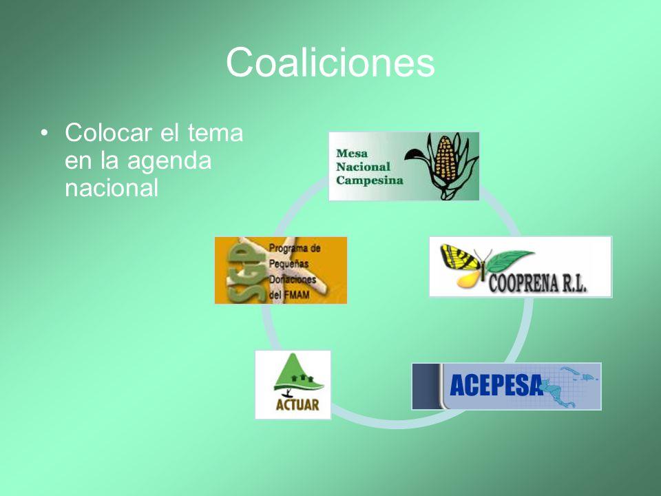 Coaliciones Colocar el tema en la agenda nacional