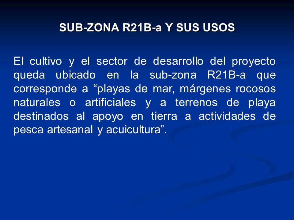 SUB-ZONA R21B-a Y SUS USOS El cultivo y el sector de desarrollo del proyecto queda ubicado en la sub-zona R21B-a que corresponde a playas de mar, márg