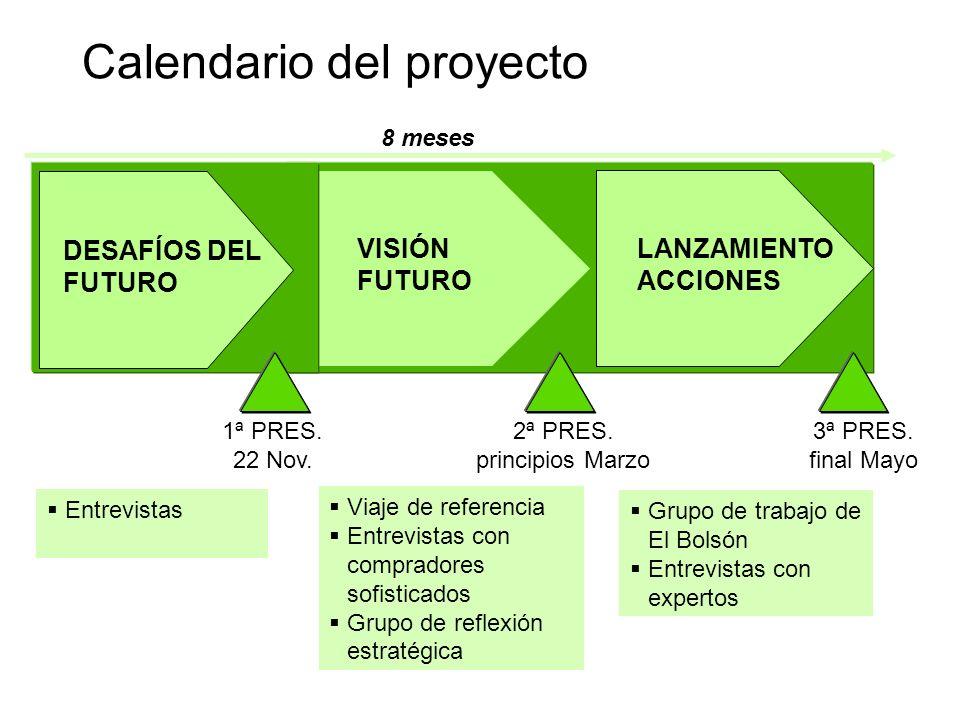 Calendario del proyecto 8 meses Entrevistas Viaje de referencia Entrevistas con compradores sofisticados Grupo de reflexión estratégica Grupo de traba