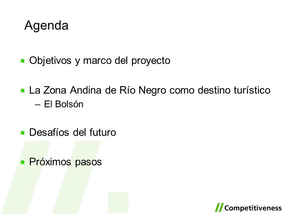 Desafíos estratégicos ¿Tenemos que esperar a que este listo el Cerro Perito Moreno.