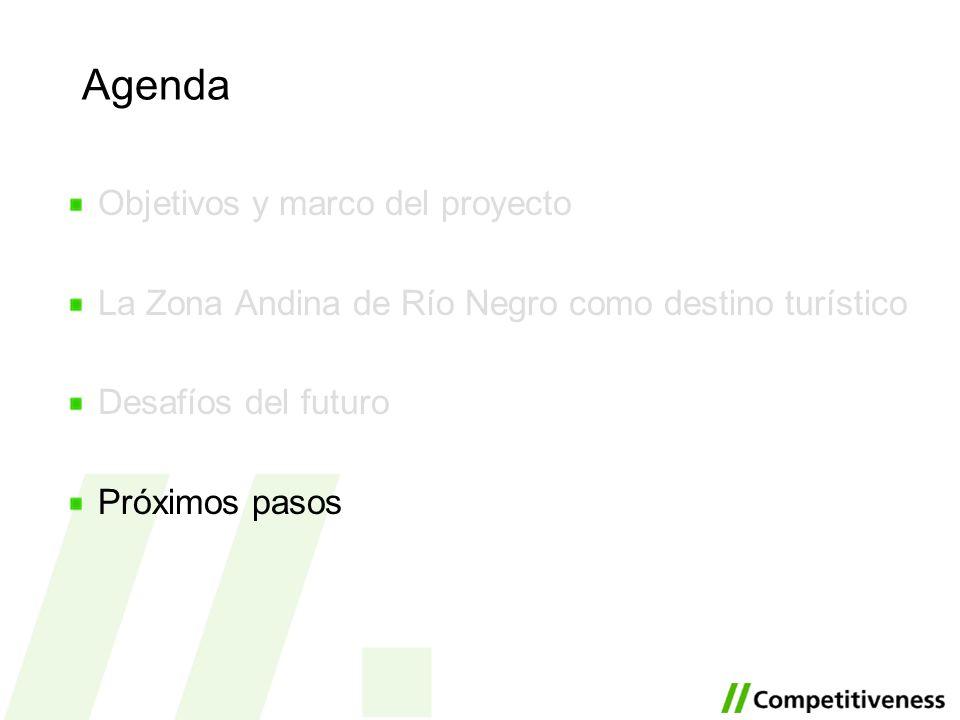 Agenda Objetivos y marco del proyecto La Zona Andina de Río Negro como destino turístico Desafíos del futuro Próximos pasos
