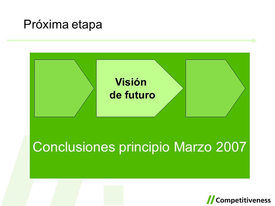 Próxima etapa Conclusiones principio Marzo 2007 Visión de futuro