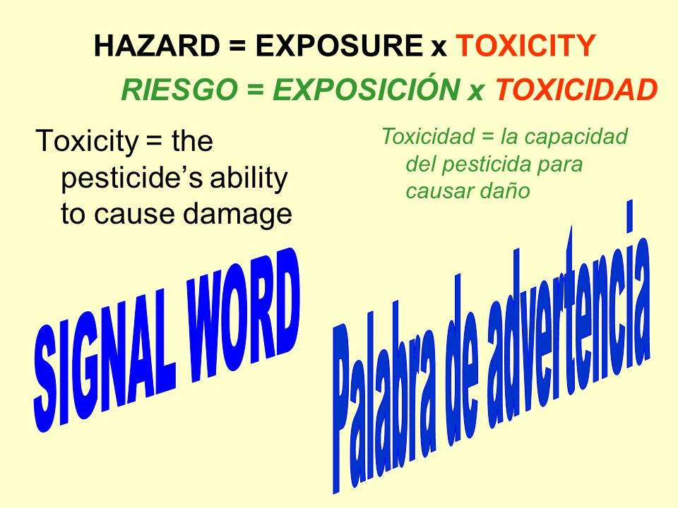 HAZARD = EXPOSURE x TOXICITY Toxicity = the pesticides ability to cause damage RIESGO = EXPOSICIÓN x TOXICIDAD Toxicidad = la capacidad del pesticida