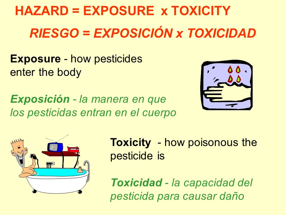 HAZARD = EXPOSURE x TOXICITY Toxicity - how poisonous the pesticide is Toxicidad - la capacidad del pesticida para causar daño Exposure - how pesticid