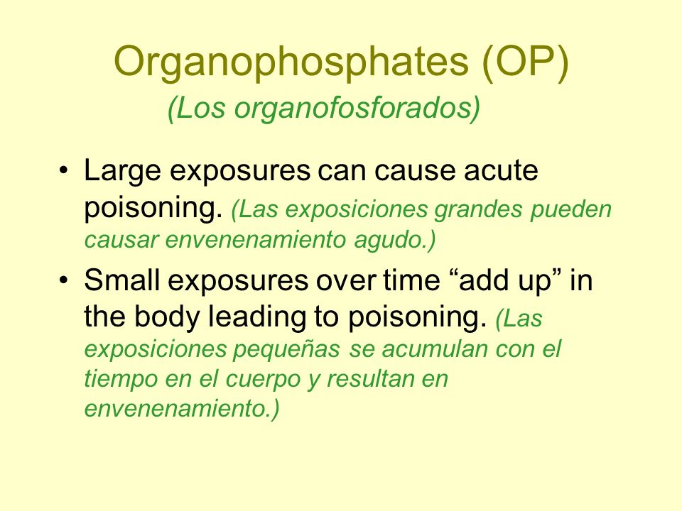 Organophosphates (OP) Large exposures can cause acute poisoning. (Las exposiciones grandes pueden causar envenenamiento agudo.) Small exposures over t