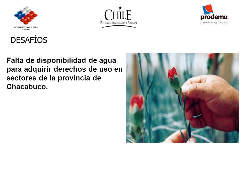 DESAFÍOS Falta de disponibilidad de agua para adquirir derechos de uso en sectores de la provincia de Chacabuco.