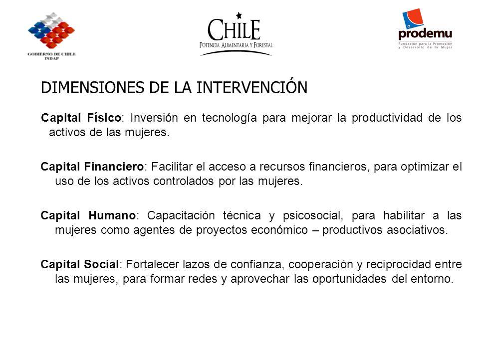 DIMENSIONES DE LA INTERVENCIÓN Capital Físico: Inversión en tecnología para mejorar la productividad de los activos de las mujeres. Capital Financiero