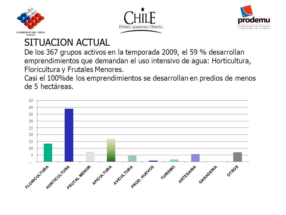 SITUACION ACTUAL De los 367 grupos activos en la temporada 2009, el 59 % desarrollan emprendimientos que demandan el uso intensivo de agua: Horticultu