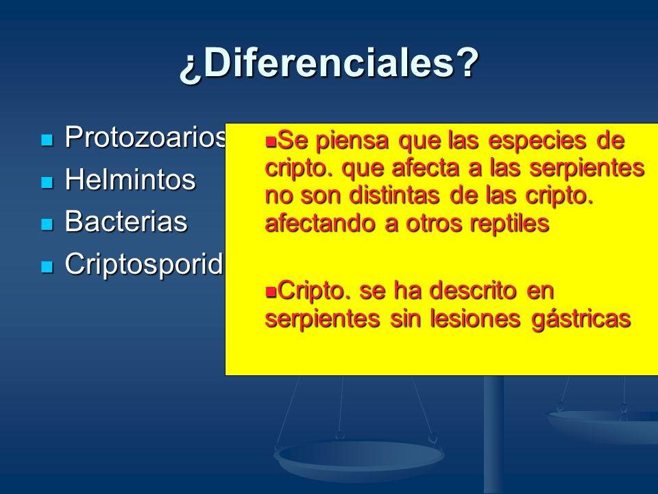 Definición del Caso En ciertas lagartijas y serpientes la criptosporidiosis clínica es caracterizada por: En ciertas lagartijas y serpientes la cripto