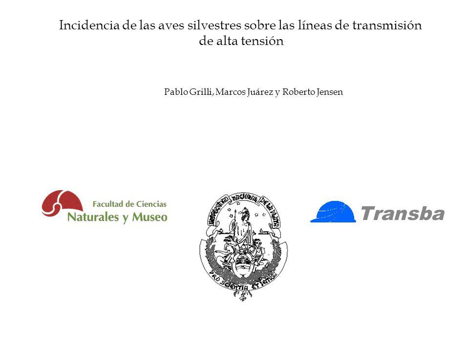 Incidencia de las aves silvestres sobre las líneas de transmisión de alta tensión Pablo Grilli, Marcos Juárez y Roberto Jensen