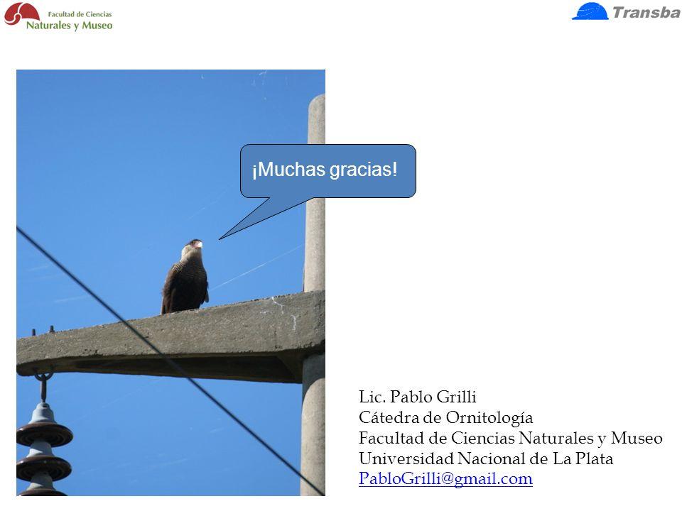 ¡Muchas gracias! Lic. Pablo Grilli Cátedra de Ornitología Facultad de Ciencias Naturales y Museo Universidad Nacional de La Plata PabloGrilli@gmail.co