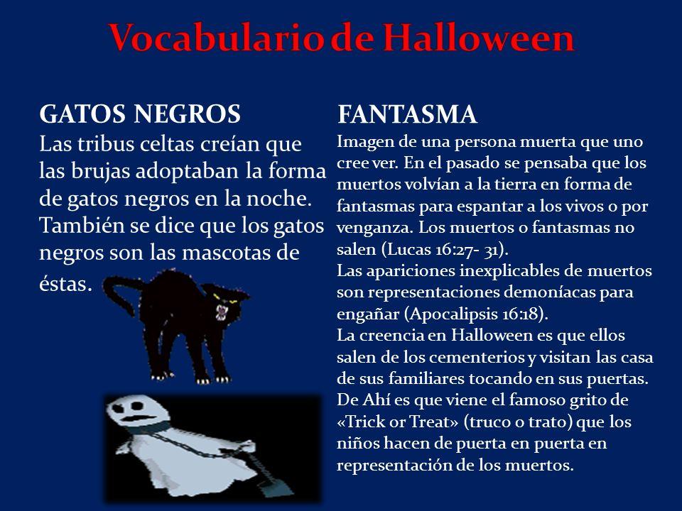 GATOS NEGROS Las tribus celtas creían que las brujas adoptaban la forma de gatos negros en la noche.