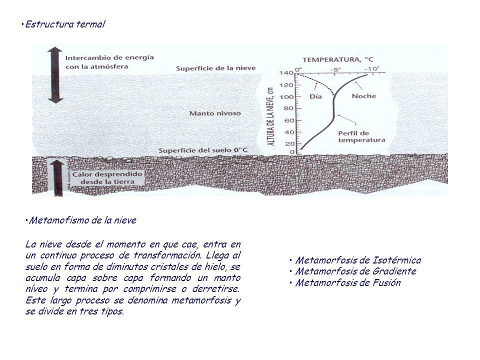 Metamorfosis de Gradiente Se da cuando existe un gradiente, o diferencial, de temperatura entre la parte superior y el fondo de la masa de nieve.