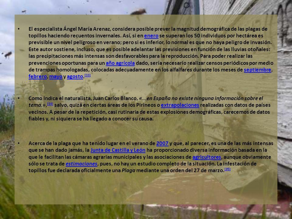 El especialista Ángel María Arenaz, considera posible prever la magnitud demográfica de las plagas de topillos haciendo recuentos invernales. Así, si
