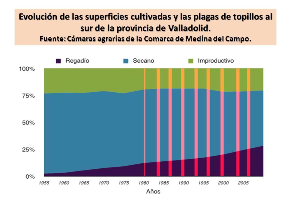 Evolución de las superficies cultivadas y las plagas de topillos al sur de la provincia de Valladolid. Fuente: Cámaras agrarias de la Comarca de Medin