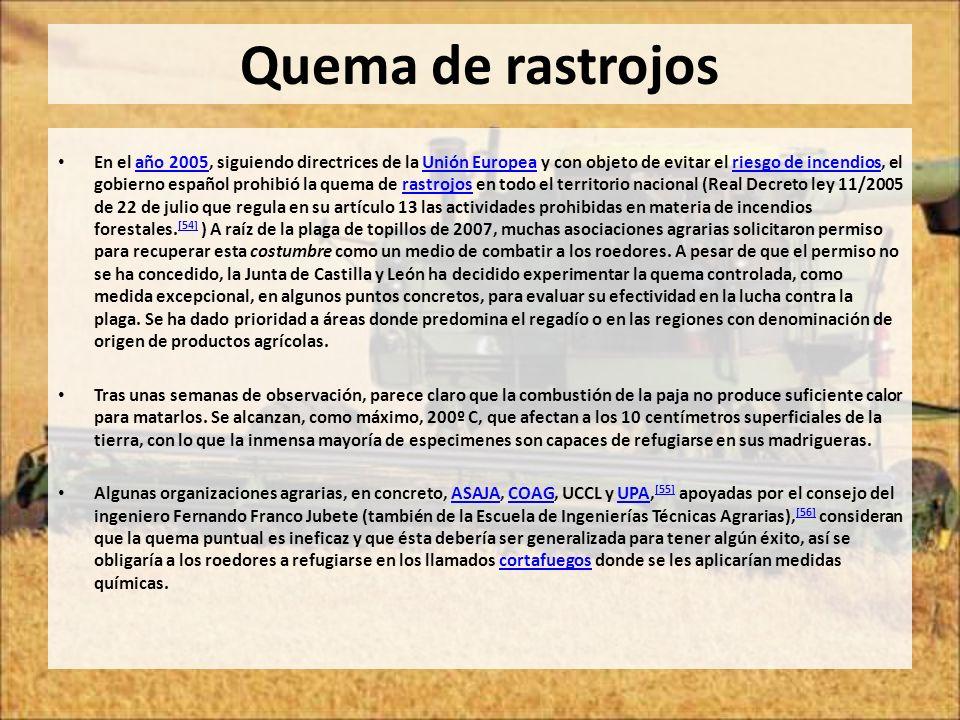Quema de rastrojos En el año 2005, siguiendo directrices de la Unión Europea y con objeto de evitar el riesgo de incendios, el gobierno español prohib
