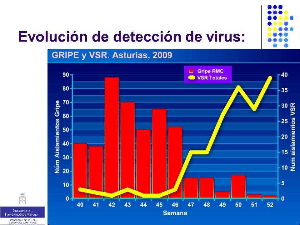 Evolución futura: escenarios… A: ya no habrá más gripe en esta temporada B: habrá Gripe B en febrero C: habrá otra onda de Gripe A, la nueva o la estacional