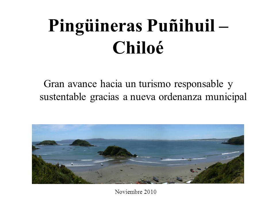 Pingüineras Puñihuil – Chiloé Gran avance hacia un turismo responsable y sustentable gracias a nueva ordenanza municipal Noviembre 2010