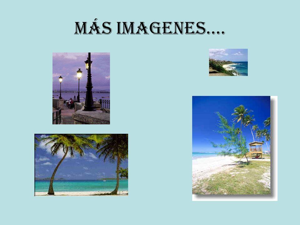 Más imagenes….