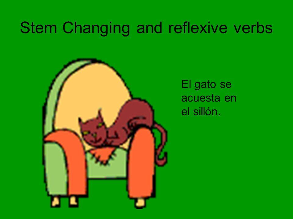 Stem Changing and reflexive verbs El gato se acuesta en el sillón.
