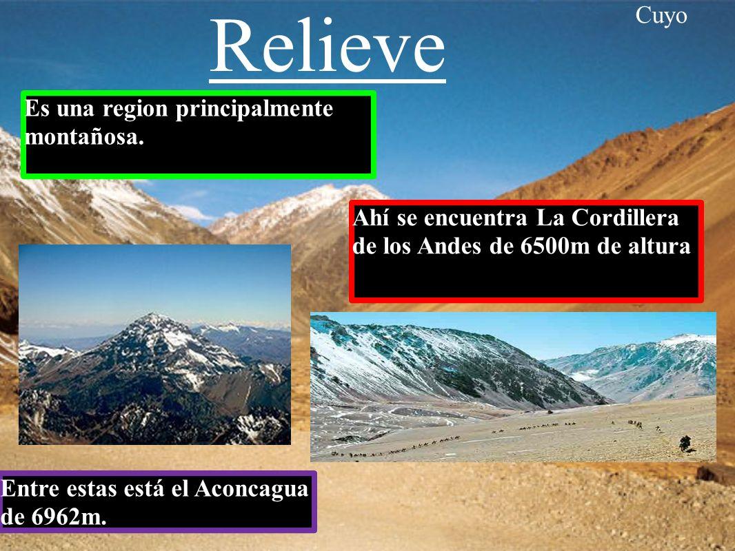 La region de Cuyo esta formada por Mendoza San Juan y San Luis La region del Cuyo es conocida como la region andina