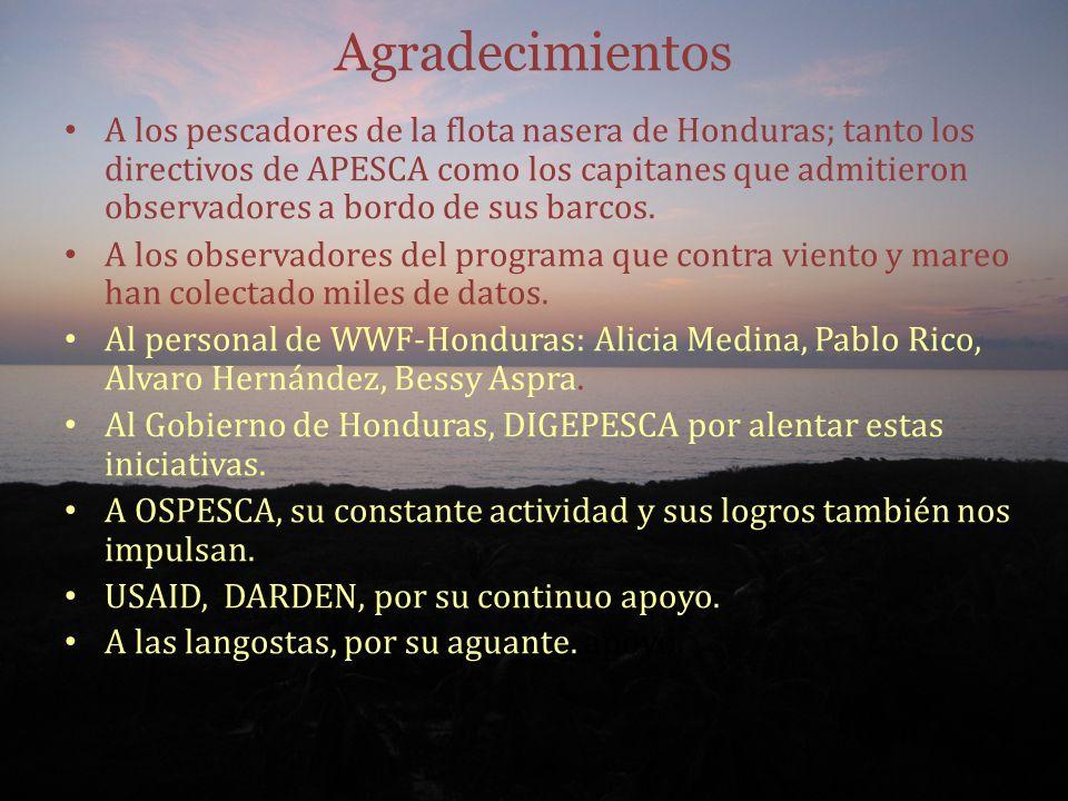 Agradecimientos A los pescadores de la flota nasera de Honduras; tanto los directivos de APESCA como los capitanes que admitieron observadores a bordo