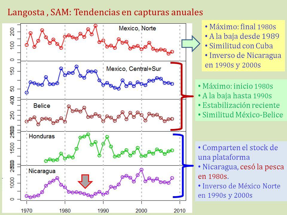 Langosta, SAM: Tendencias en capturas anuales Máximo: final 1980 s A la baja desde 1989 Similitud con Cuba Inverso de Nicaragua en 1990 s y 2000 s Máx