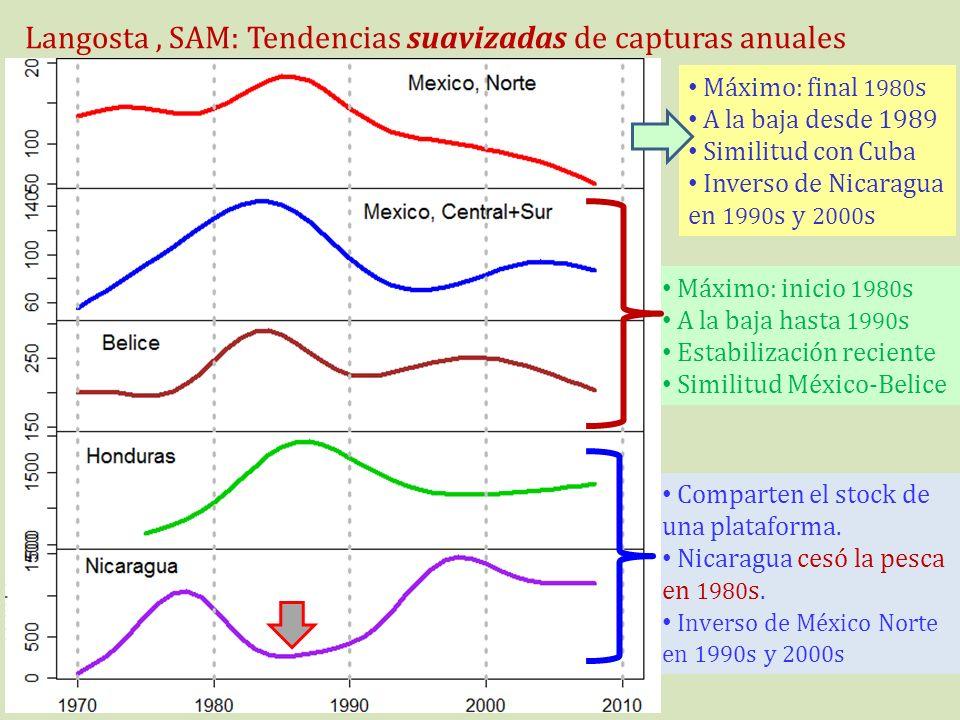 Langosta, SAM: Tendencias suavizadas de capturas anuales Máximo: final 1980 s A la baja desde 1989 Similitud con Cuba Inverso de Nicaragua en 1990 s y