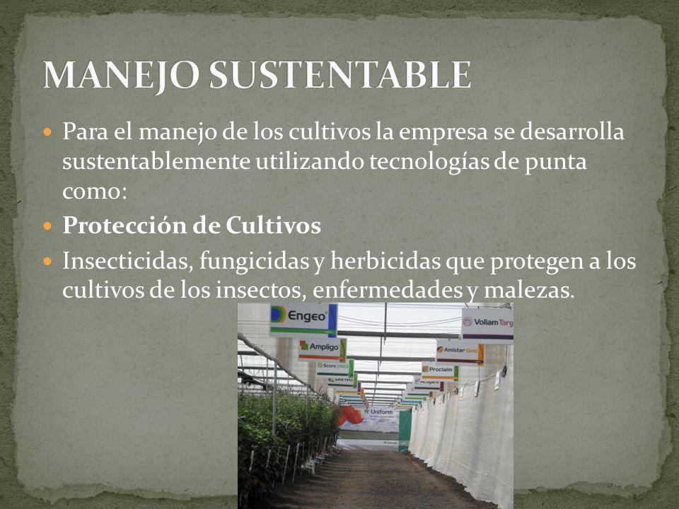 Para el manejo de los cultivos la empresa se desarrolla sustentablemente utilizando tecnologías de punta como: Protección de Cultivos Insecticidas, fu