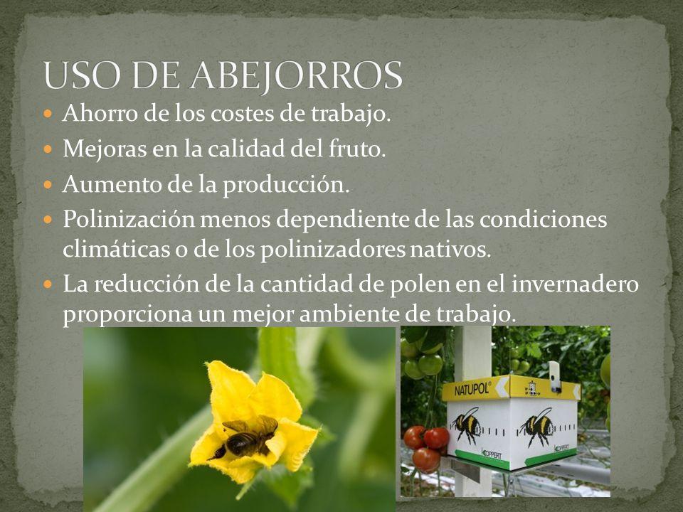 Ahorro de los costes de trabajo. Mejoras en la calidad del fruto. Aumento de la producción. Polinización menos dependiente de las condiciones climátic