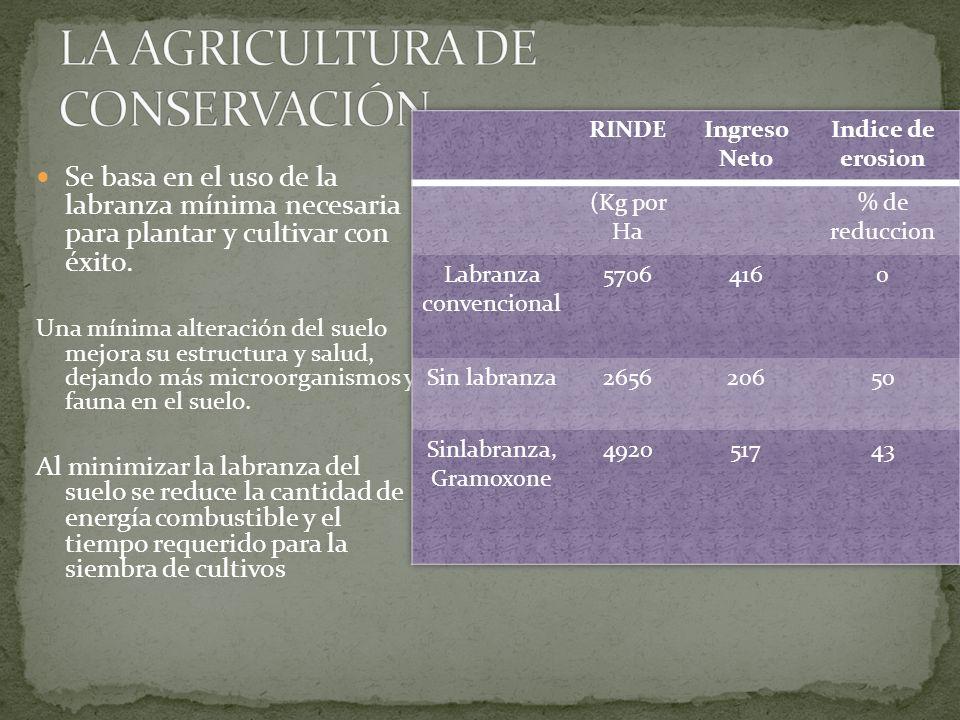 Se basa en el uso de la labranza mínima necesaria para plantar y cultivar con éxito. Una mínima alteración del suelo mejora su estructura y salud, dej