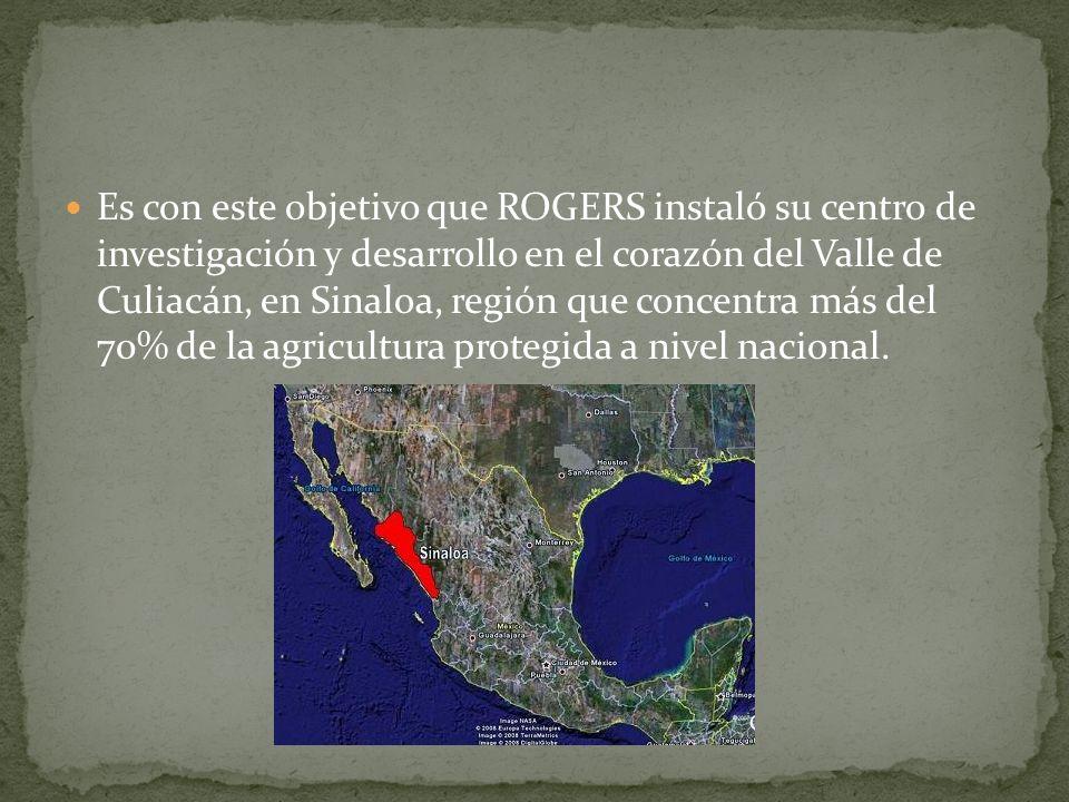 Es con este objetivo que ROGERS instaló su centro de investigación y desarrollo en el corazón del Valle de Culiacán, en Sinaloa, región que concentra
