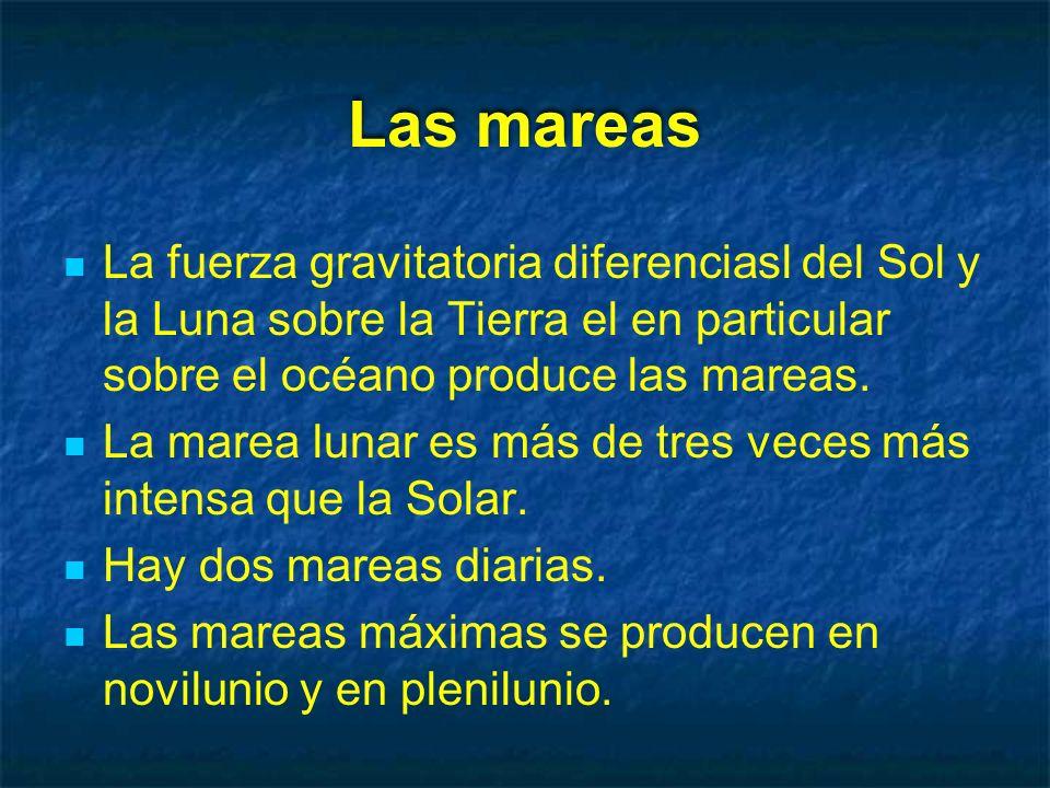 Las mareas La fuerza gravitatoria diferenciasl del Sol y la Luna sobre la Tierra el en particular sobre el océano produce las mareas.
