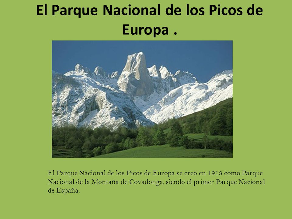 El Parque Nacional de los Picos de Europa. El Parque Nacional de los Picos de Europa se creó en 1918 como Parque Nacional de la Montaña de Covadonga,