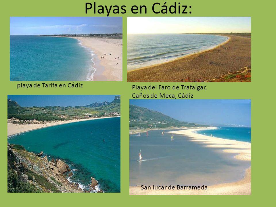 Playas en Cádiz: playa de Tarifa en Cádiz Playa del Faro de Trafalgar, Caños de Meca, Cádiz San lucar de Barrameda