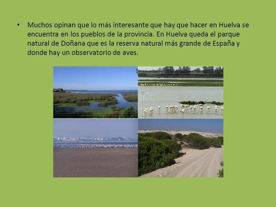 Muchos opinan que lo más interesante que hay que hacer en Huelva se encuentra en los pueblos de la provincia. En Huelva queda el parque natural de Doñ