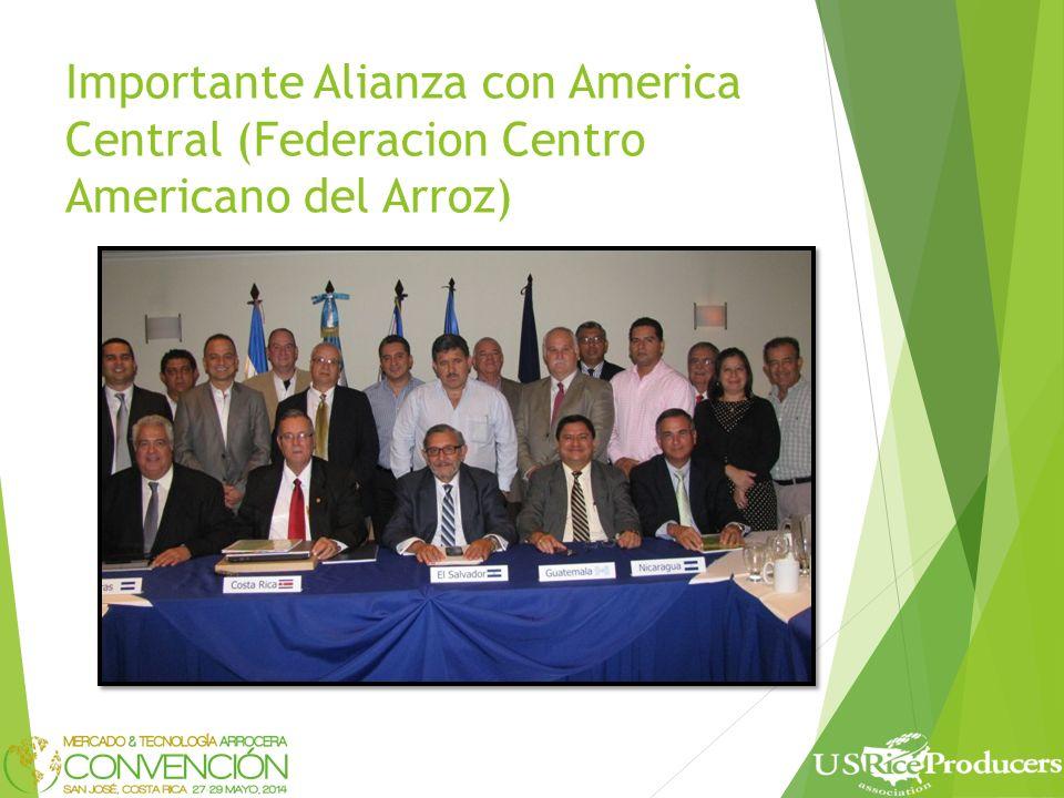 Importante Alianza con America Central (Federacion Centro Americano del Arroz)