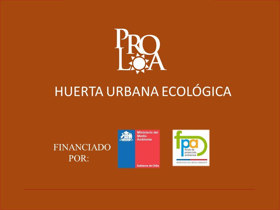 HUERTA URBANA ECOLÓGICA FINANCIADO POR: